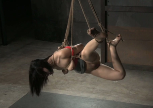 Hogtied big bottomed tattooed brunette hair receives hung above the floor