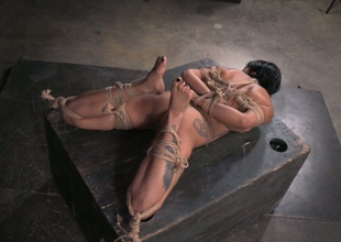 Hogtied tattooed brunette lies on the wooden table and receives tits jammed