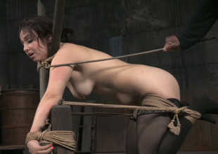 Hard tied uncomplaining bootylicious pale brunette gets cookie teased rough
