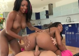 Massive and hard dong keeps hammering fur pie of ebony