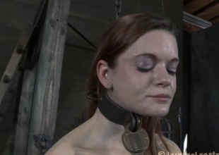 Gagged chick acquires rough fur pie playing from tormentor